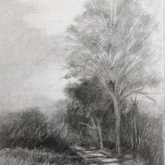 Onota-Path